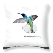 White Necked Jacobin Trinidad Throw Pillow