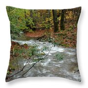 White Oak Run Autumn Throw Pillow