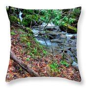 White Oak Run In Spring Throw Pillow