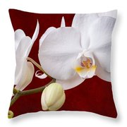 White Orchid Closeup Throw Pillow