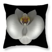 White Orchid On Black Throw Pillow