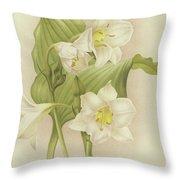 White Orchids   Eucharis Sanderiana Throw Pillow