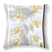 White Orchids Framed Throw Pillow