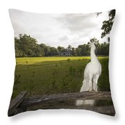 White Peacock At Magnolia Plantation Throw Pillow