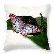 White Peacock Butterfly 2 Throw Pillow