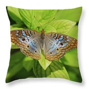 White Peacock Butterfly I Throw Pillow