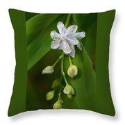 White Pearl Throw Pillow