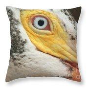 White Pelican Eye Throw Pillow