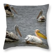 White Pelicans On Lake  Throw Pillow