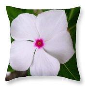 White Periwinkle Flower 1 Throw Pillow