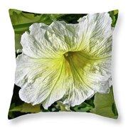White Petunia - Solanaceae Throw Pillow