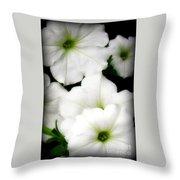 White Petunias 2 Throw Pillow