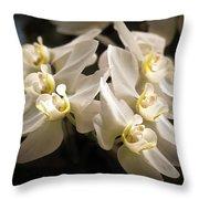 White Phalaenopsis Blossom Throw Pillow