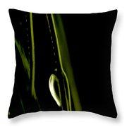 White Pine Dew Throw Pillow