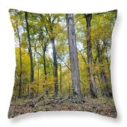White Pine Hollow Throw Pillow