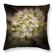 White Plum Blossom- 2 Throw Pillow