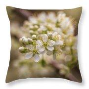 White Plum Blossom Throw Pillow