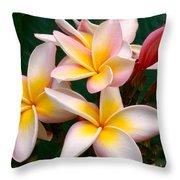 White Plumeria Throw Pillow