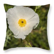 White Poppy With Buds Throw Pillow