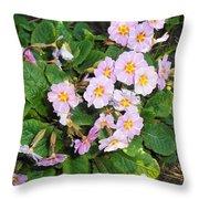 White Primroses Throw Pillow