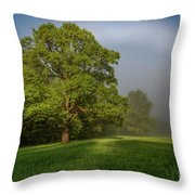 White Rainbow Throw Pillow