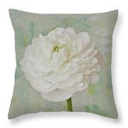 White Ranunculus Throw Pillow