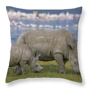 White Rhino Mother And Calf Grazing Throw Pillow by Ingo Arndt