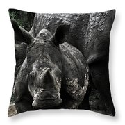 White Rhinos  Throw Pillow