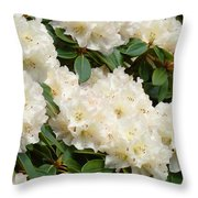 White Rhodies Landscape Floral Art Prints Canvas Baslee Troutman Throw Pillow