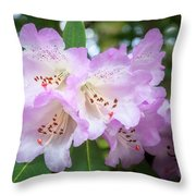 White Rhododendron Flowers With A Purple Fringe Throw Pillow