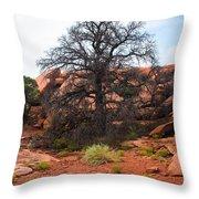 White Rim Overlook Trail Tree Throw Pillow