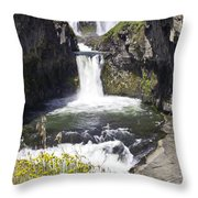 White River Falls Throw Pillow