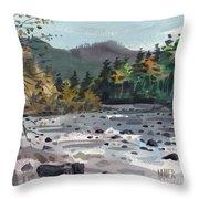 White River In Autumn Throw Pillow