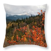 White River National Forest Autumn Panorama Throw Pillow