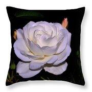 White Rose 006 Throw Pillow