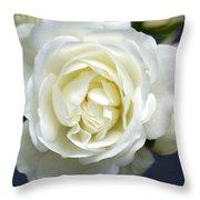 White Rose Bloom Throw Pillow