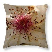 White Rose Centerpiece Throw Pillow