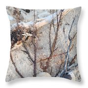White Sand Beach Finds Throw Pillow
