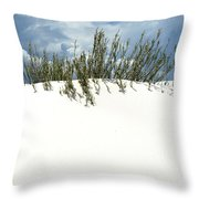 White Sand Green Grass Blue Sky Throw Pillow