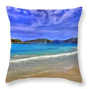 White Sands Beach Throw Pillow