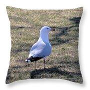 White Seagull Throw Pillow