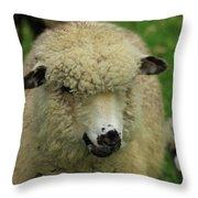White Sheep Throw Pillow