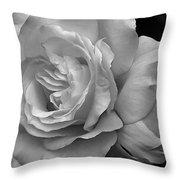 White Simplicity Rose Macro Throw Pillow