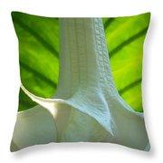 White Song Throw Pillow
