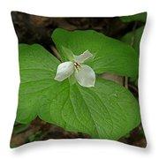 White Spring Trillium Throw Pillow