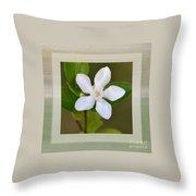 White Star Flower Throw Pillow