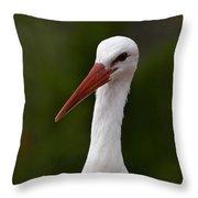 White Stork 5 Throw Pillow