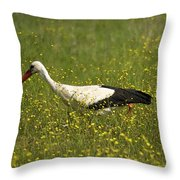 White Stork Looking Fr Frogs Throw Pillow
