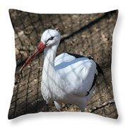 White Stork Throw Pillow