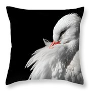 White Stork Throw Pillow by Wim Lanclus
